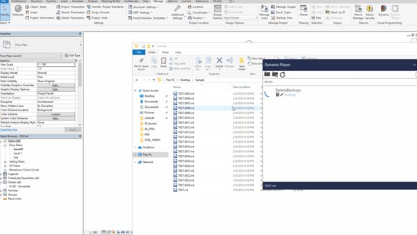 Automatically delete Revit backups with Dynamo