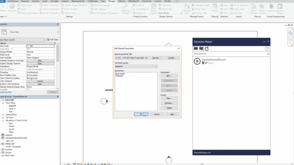 Delete Project Shared Parameters with Dynamo (Script available for download)